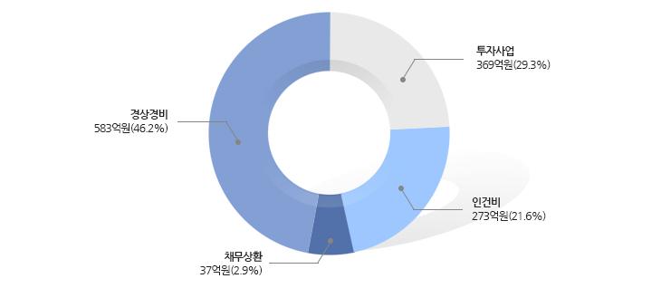 투자사업 491억원(45%), 경상경비 284억원(26%), 인건비 250억원(23%), 채무상환 65억원(6%)